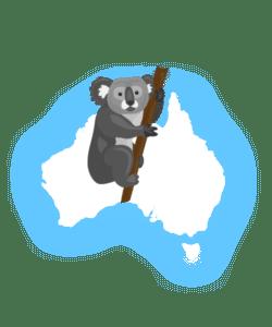 Koala over Australia